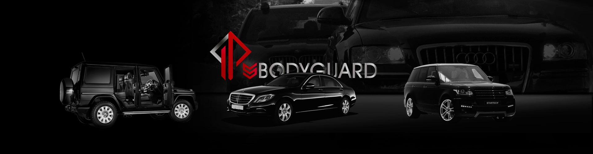 security driver ips bodyguard